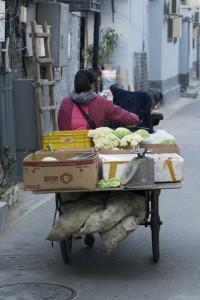 Den kørende grønthandel
