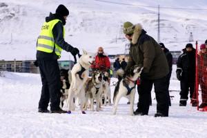 Klar til afgang Trappers Trail, Longyearbyen