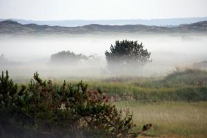 Lavtliggende tåge Rødhus Klithede