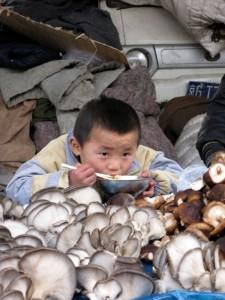 Spiser nudler på marked med svampe - Beijing 2010