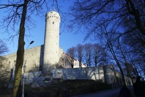 Toompea Castel og Pikk Herman