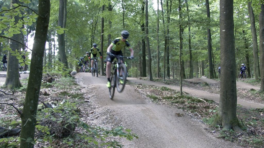 Mountainbike MTB Teknikområde Rold Skov