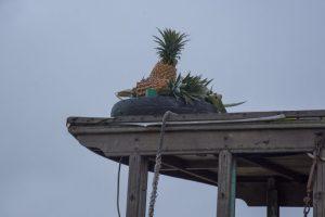 """Ananas-""""butik"""", Flydende marked /Floating Market, Can Tho, Mekong-deltaet"""
