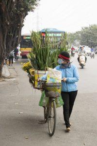 Blomsterbutik på cykel, Hanoi