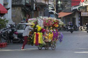 Rullende blomsterbutik, Hai Phong