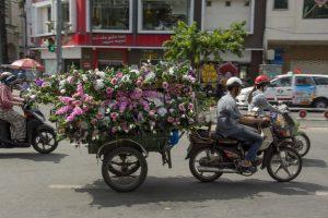 Blomsterudbringning, Ho Chi Minh Byen