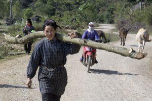 Tay-kvinde slæber tømmer ved Ban Gioc vandfald