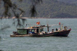 Fiskerbåde, Quan Lan